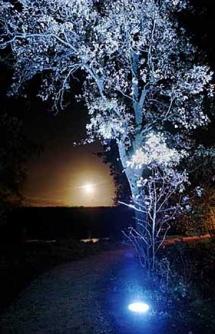 AtexLicht Tuinverlichting (4)