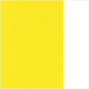 (18) 66.8003.13 Bright yellow