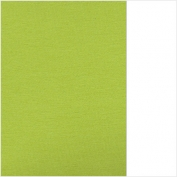 (43) 66.8003.48 Apple green