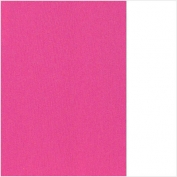 (49) 66.8003.15 Barbie pink