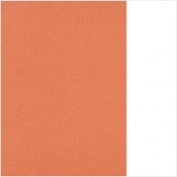 (64) 66.8003.65 Light orange