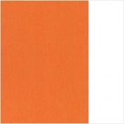 (65) 66.8003.62 Orange