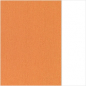 (66) 66.8003.63 Pale orange