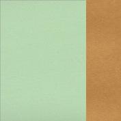 66.8003.04 Mint green