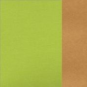 66.8003.48 Apple green