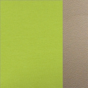 66.8003.48 Apple green