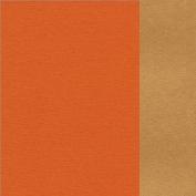 66.8003.64 Orange