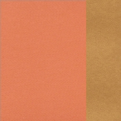 66.8003.65 Light orange