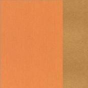 66.8003.63 Pale orange